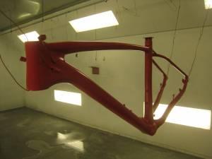 Carbon Bike (1)