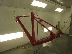 Carbon Bike (2)
