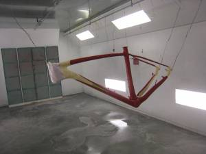 Carbon Bike (3)