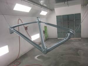Carbon Bike (7)